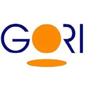gori (1)