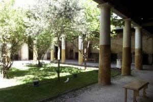 Giulio Polibio - giardino (1)