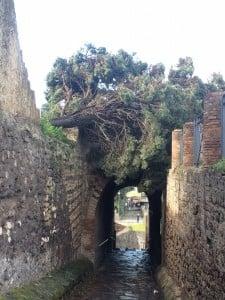 Foto Porta Marina