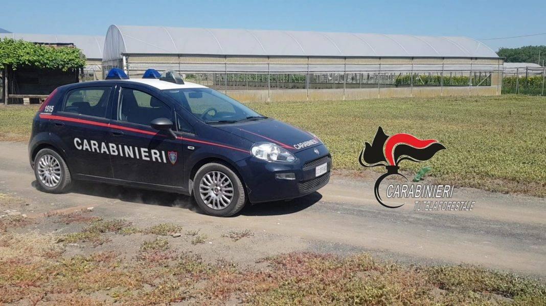 carabinieri poggiomarino